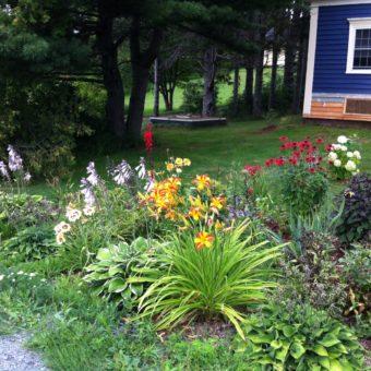 LRBF - front garden