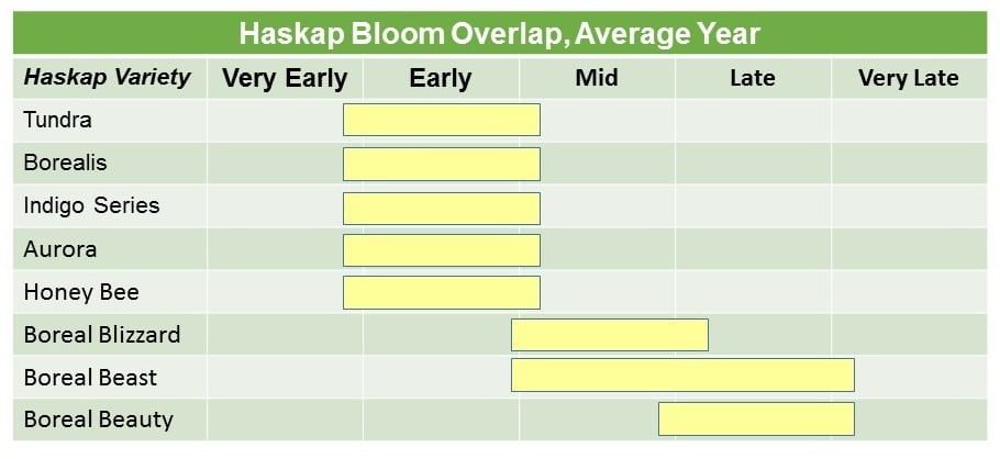Haskap Bloom Average